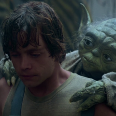 Luke Skywalker (Dagobah Training Fatigues)
