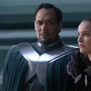 Padmé Amidala/Skywalker (Senate Gown)